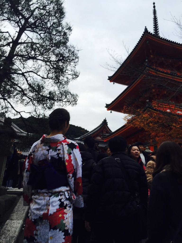 京都の紅葉は観光客でいっぱいです!2016年11月26日45