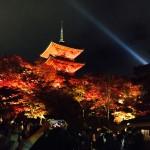 高台寺・清水寺ライトアップ大盛況!2016年11月20日32
