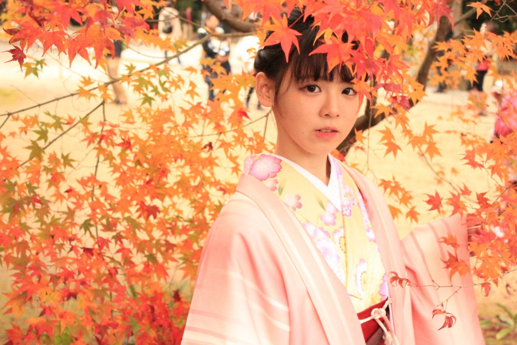 京都の紅葉は観光客でいっぱいです!2016年11月26日55