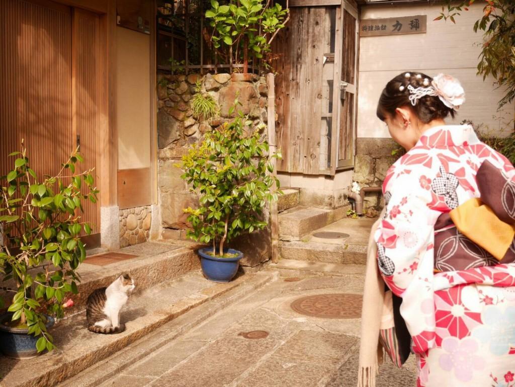 平日にゆったりと京都で着物レンタル2017年4月21日5