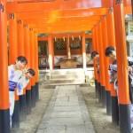 浴衣レンタルで藤森神社のあじさいを♪2017年6月13日2