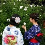 お盆休みで京都も賑わってます(^^♪2017年8月13日24