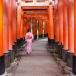 お盆休みで京都も賑わってます(^^♪2017年8月13日40