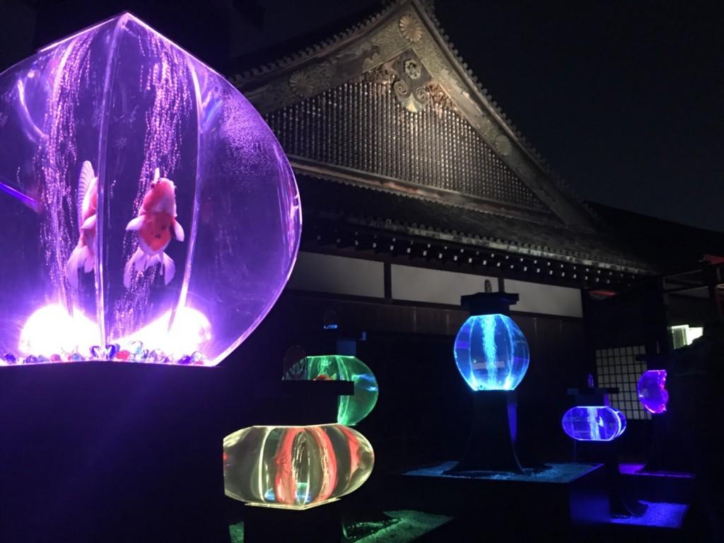 大政奉還150周年記念 アートアクアリウム城2017年10月26日7