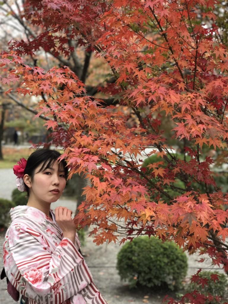 東福寺の紅葉も見頃です❣2017年11月20日11