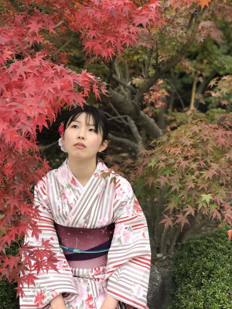 東福寺の紅葉も見頃です❣2017年11月20日12