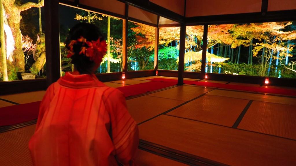 大原 勝林院・宝泉院 秋の夜灯り京都2017へ❣2017年11月22日9