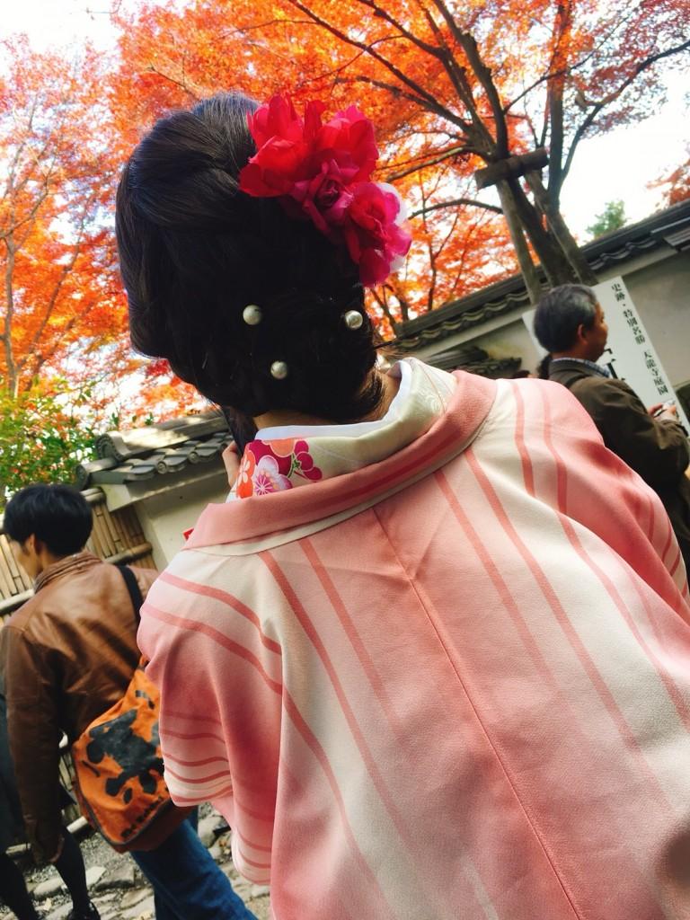 皆様、秋の紅葉ライトアップへ❣2017年11月23日24