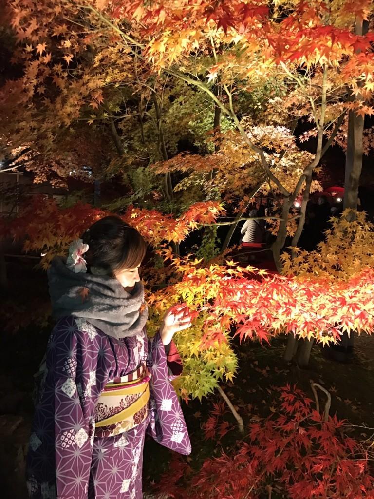 皆様、秋の紅葉ライトアップへ❣2017年11月23日30