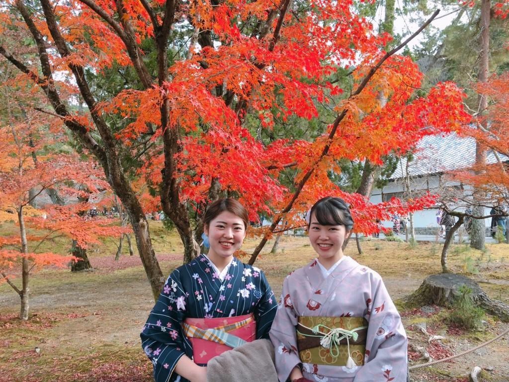 昼も夜も紅葉で大賑わいの京都2017年11月25日3