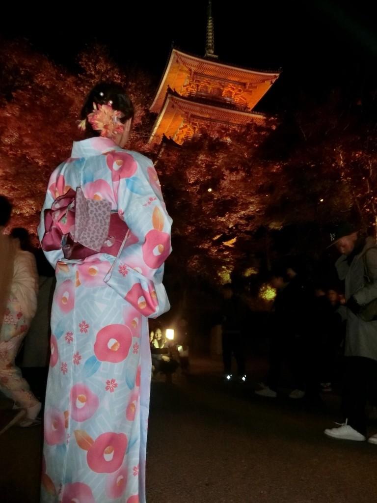 昼も夜も紅葉で大賑わいの京都2017年11月25日23