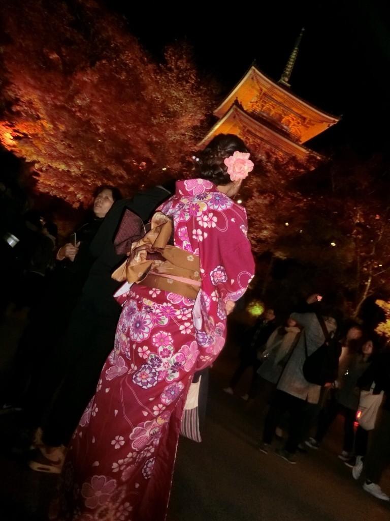 昼も夜も紅葉で大賑わいの京都2017年11月25日24