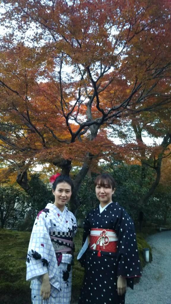 昼も夜も紅葉で大賑わいの京都2017年11月25日32