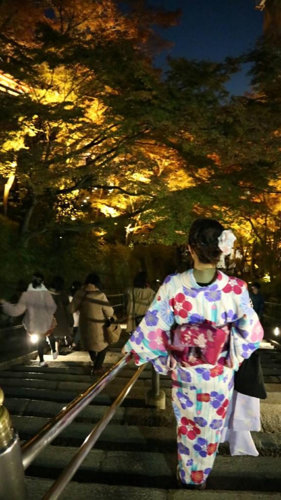 昼も夜も紅葉で大賑わいの京都2017年11月25日41