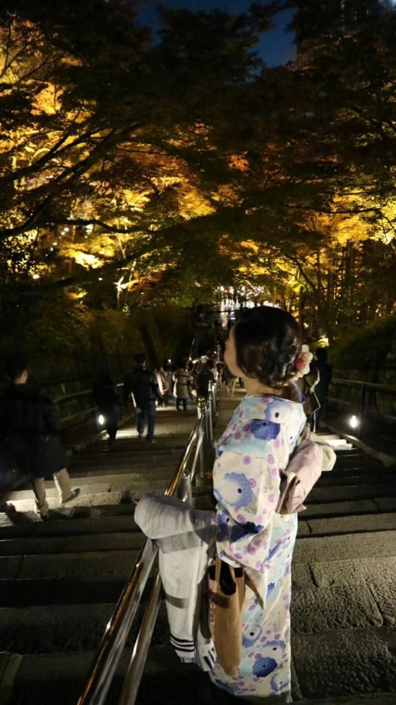 昼も夜も紅葉で大賑わいの京都2017年11月25日42