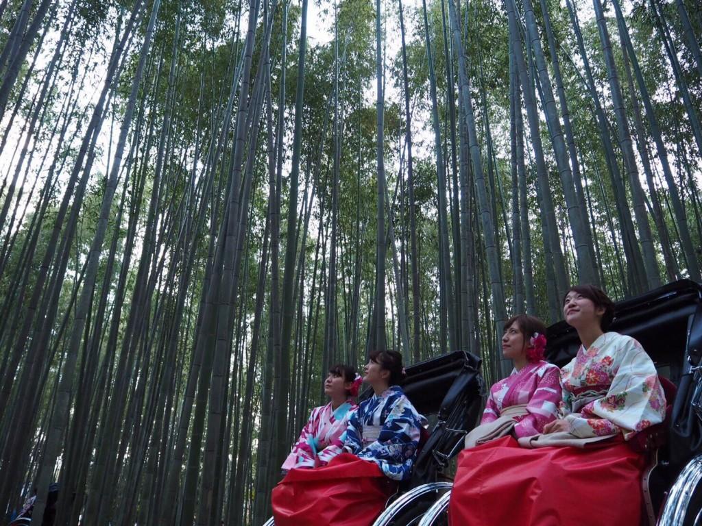 昼も夜も紅葉で大賑わいの京都2017年11月25日45