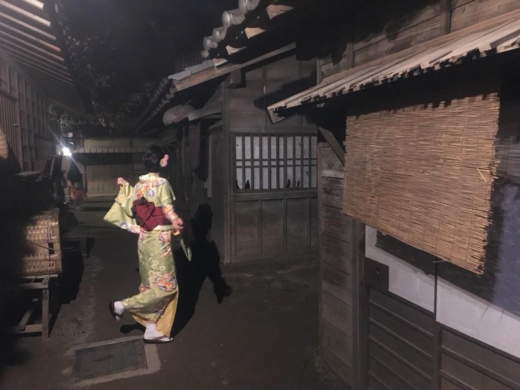昼も夜も紅葉で大賑わいの京都2017年11月25日48