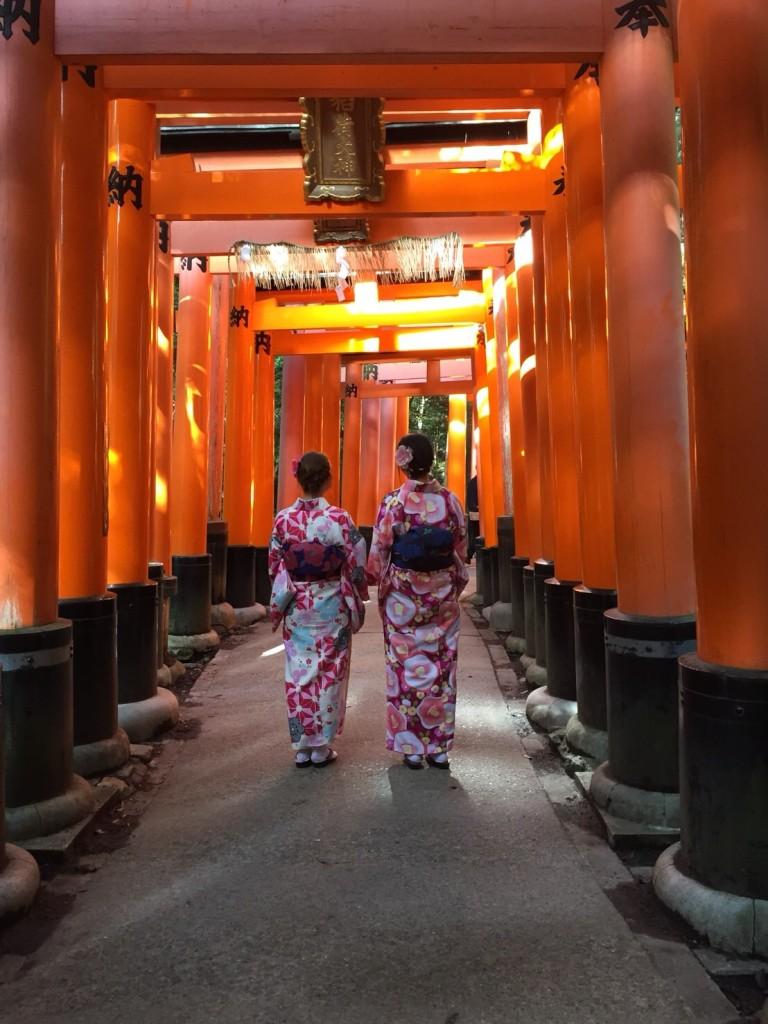 二条城桜まつりライトアップ❣和装の方は入城無料2018年3月23日2
