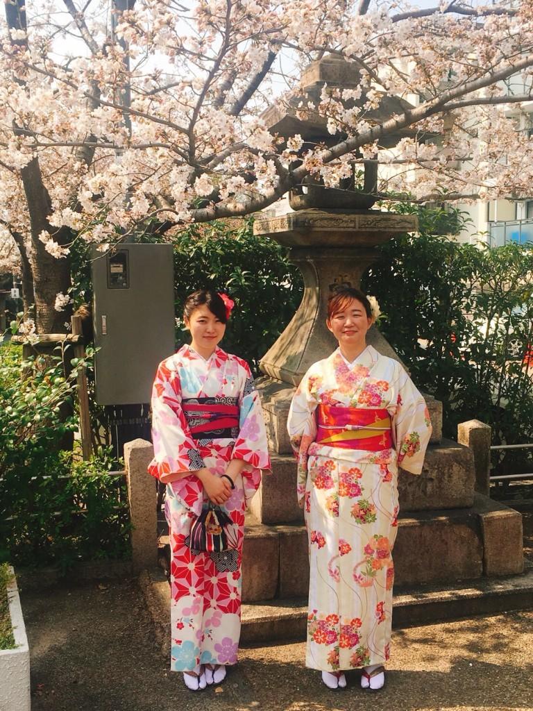 新しい地下鉄・バス一日乗車券で京都を満喫♪2018年3月25日4