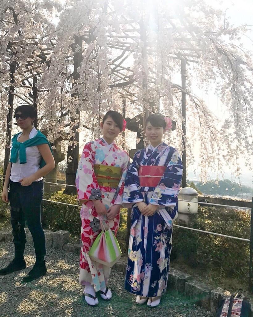 各名所、桜そろそろ満開です❣2018年3月26日1