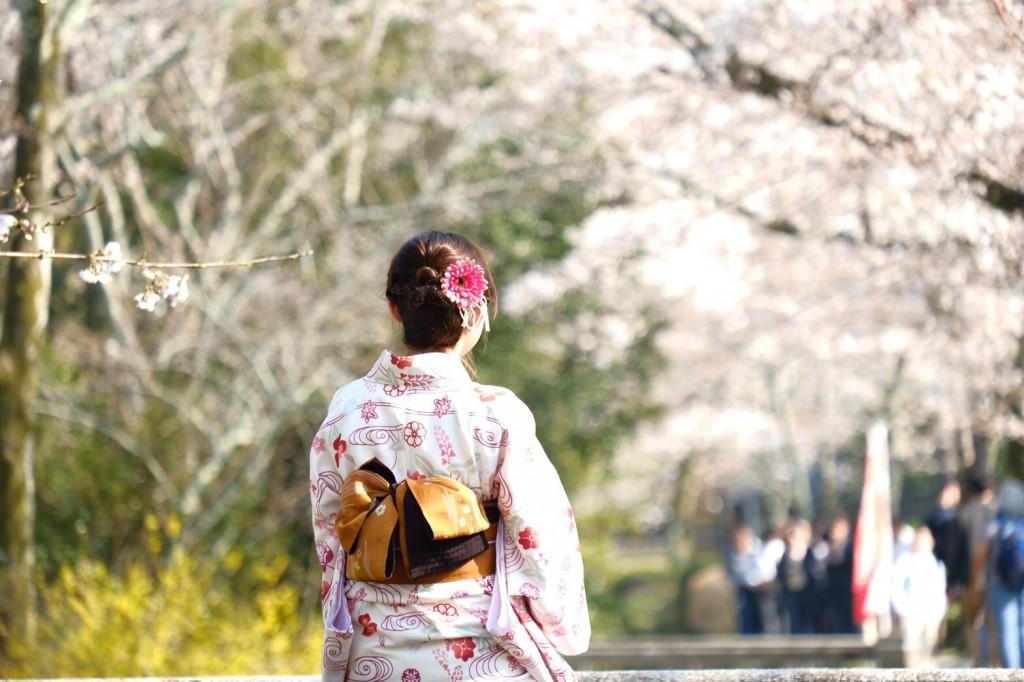 各名所、桜そろそろ満開です❣2018年3月26日10