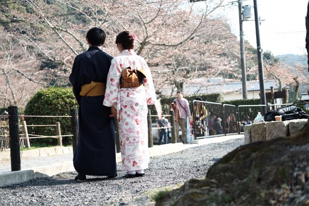 各名所、桜そろそろ満開です❣2018年3月26日12
