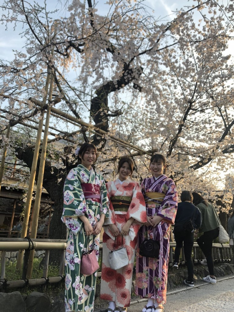 各名所、桜そろそろ満開です❣2018年3月26日15