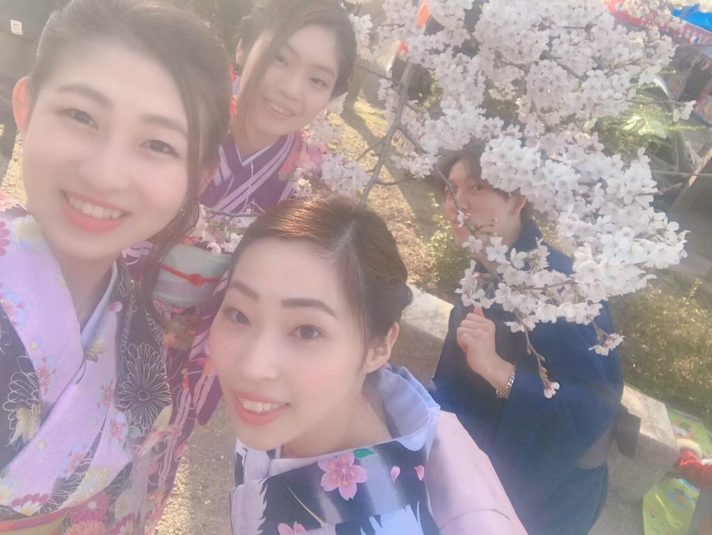 円山公園は桜満開です♡2018年3月27日12