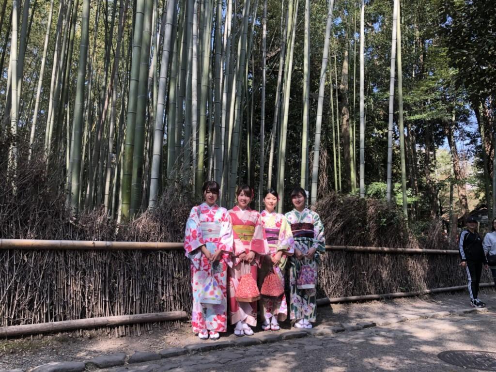 円山公園は桜満開です♡2018年3月27日22