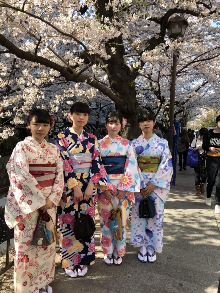 学生さん❣春休みに着物で京都の桜を満喫♪2018年3月28日7