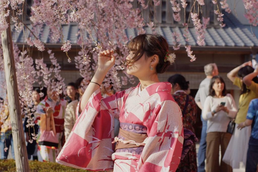 学生さん❣春休みに着物で京都の桜を満喫♪2018年3月28日20