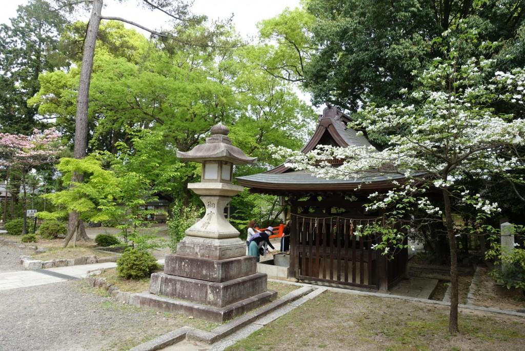 今宮神社で玉の輿♡3