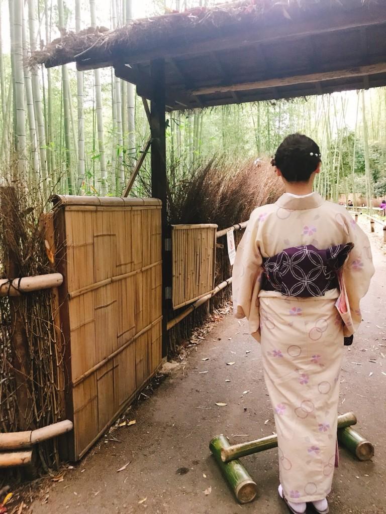 着物で一日、嵯峨嵐山を観光♪2018年4月17日4