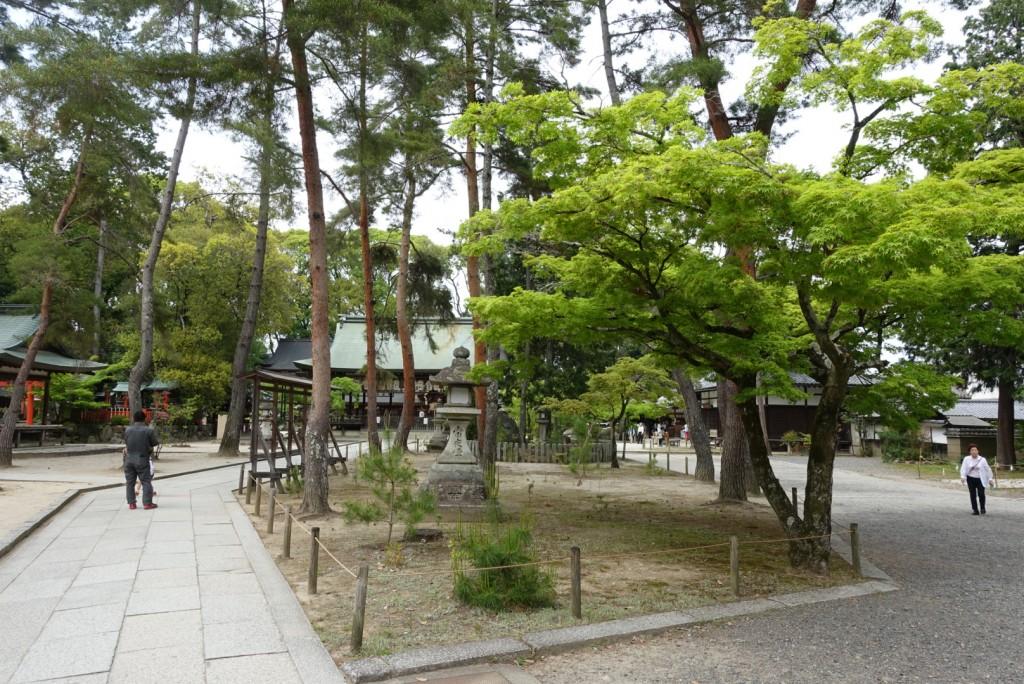 今宮神社で玉の輿♡4