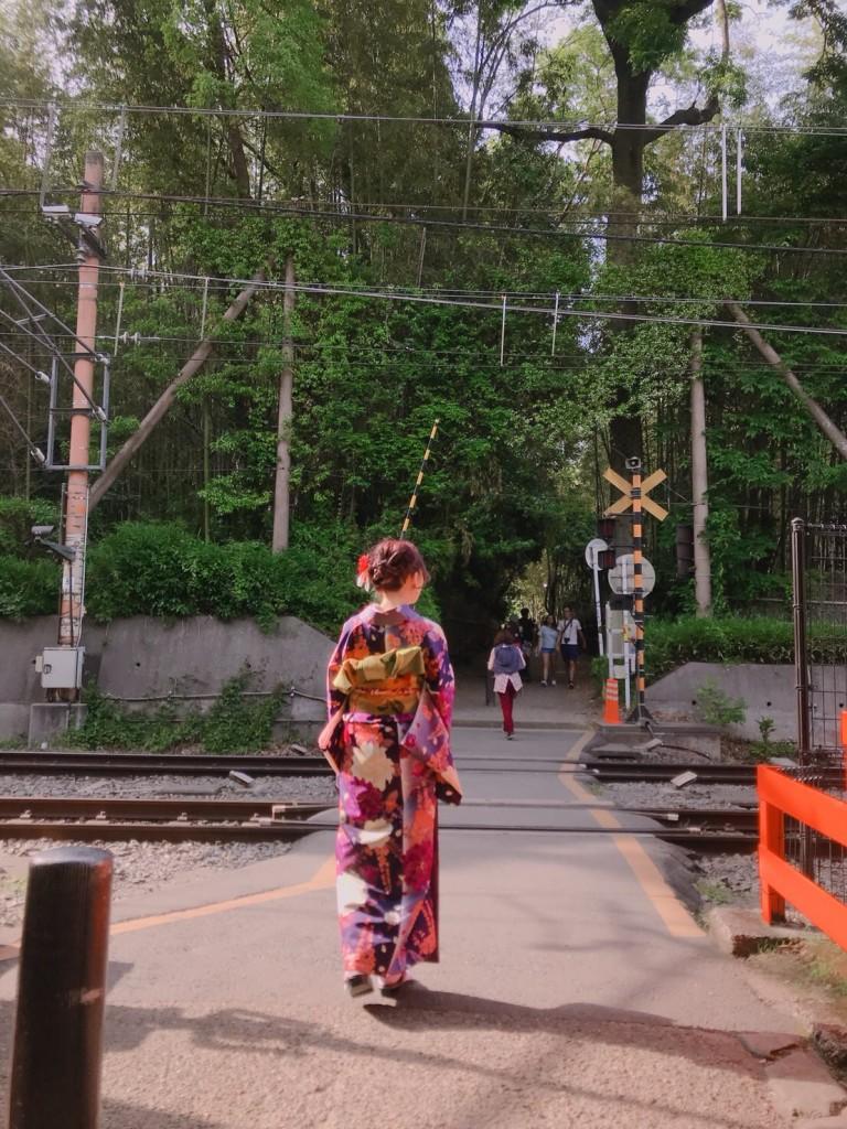 京都三大祭りの一つ「葵祭2018」2018年5月15日7