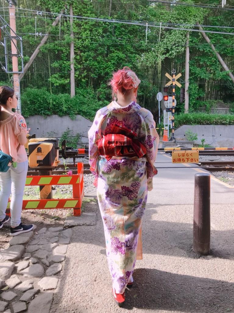 京都三大祭りの一つ「葵祭2018」2018年5月15日10