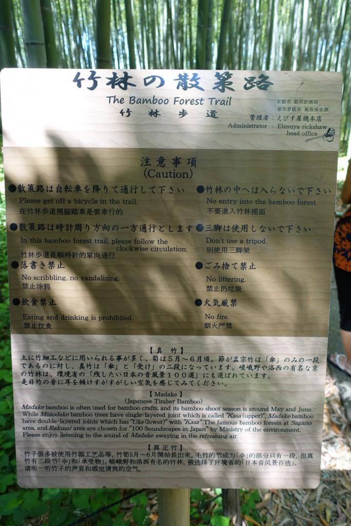 嵯峨嵐山「竹林の散策路」2