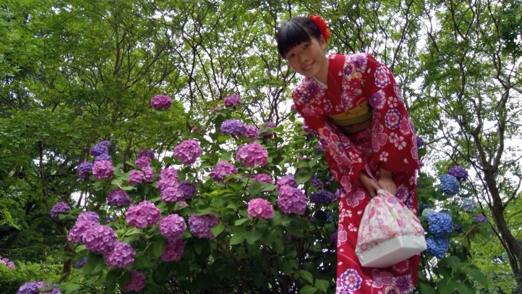 台湾から智積院と伏見稲荷大社へ♡2018年6月18日2