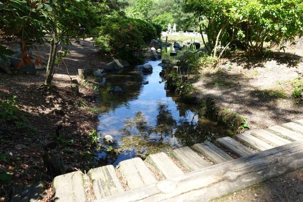 出水の小川1