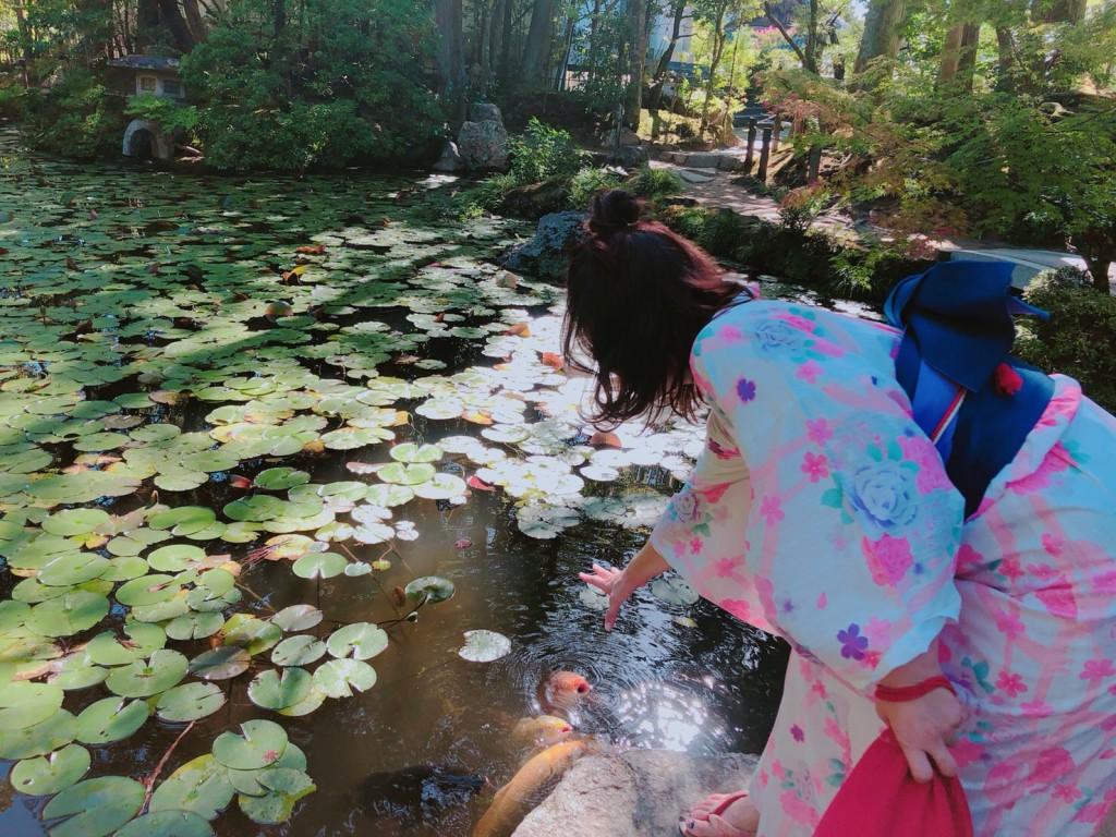 下鴨神社 糺の森の光の祭 長蛇の列2018年8月25日13