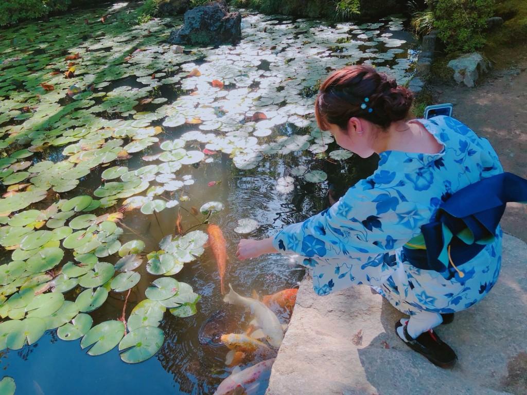 下鴨神社 糺の森の光の祭 長蛇の列2018年8月25日12