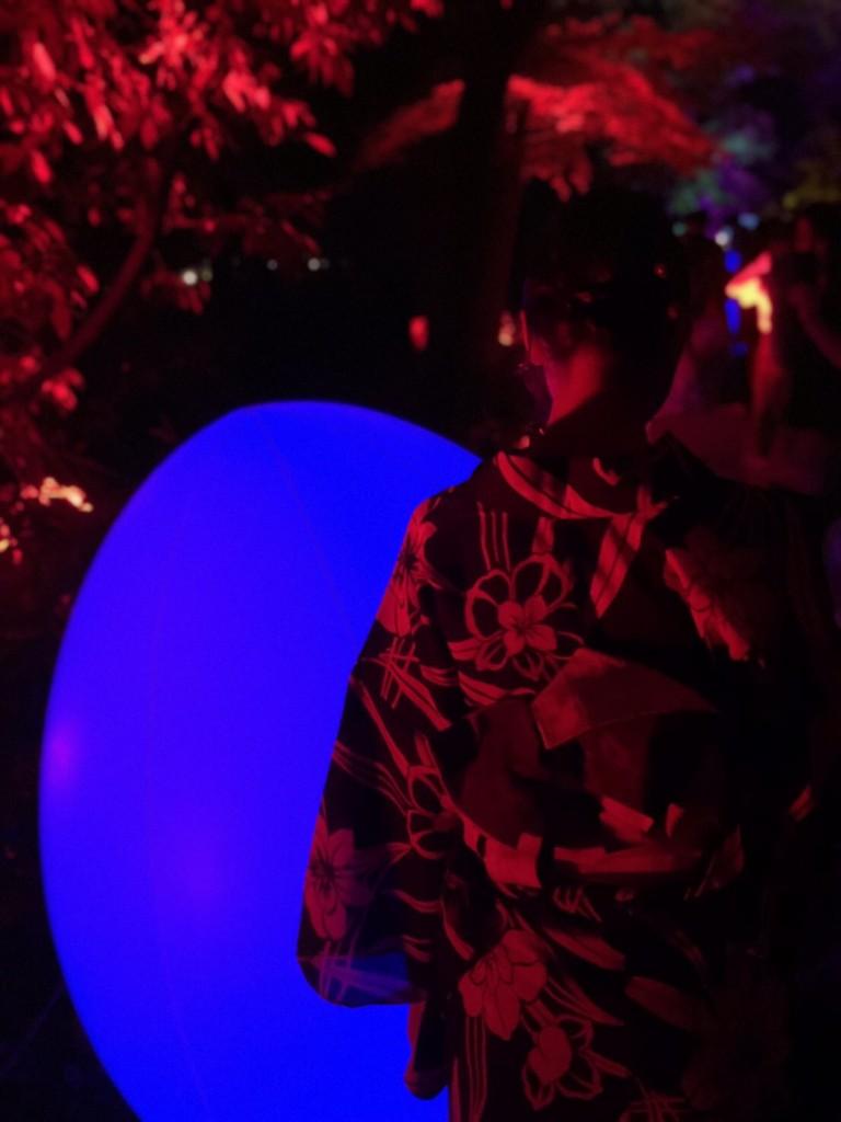 糺の森の光の祭2018 最終日も大人気2018年9月2日11