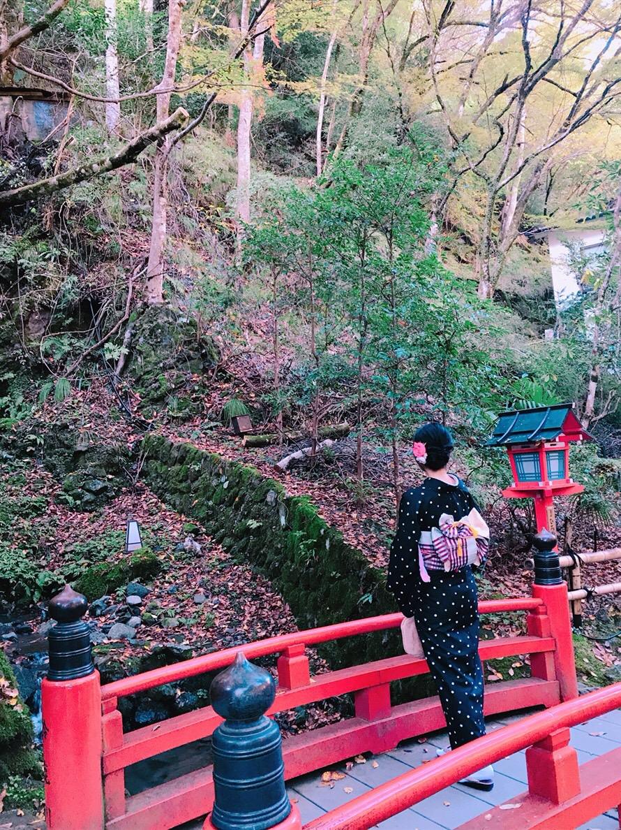 秋の京都を満喫(^^♪2018年11月6日8