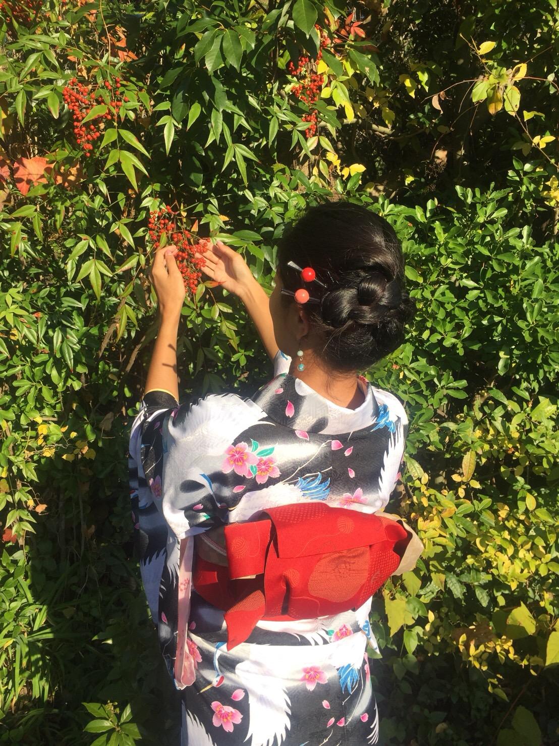 秋の京都を満喫(^^♪2018年11月6日4