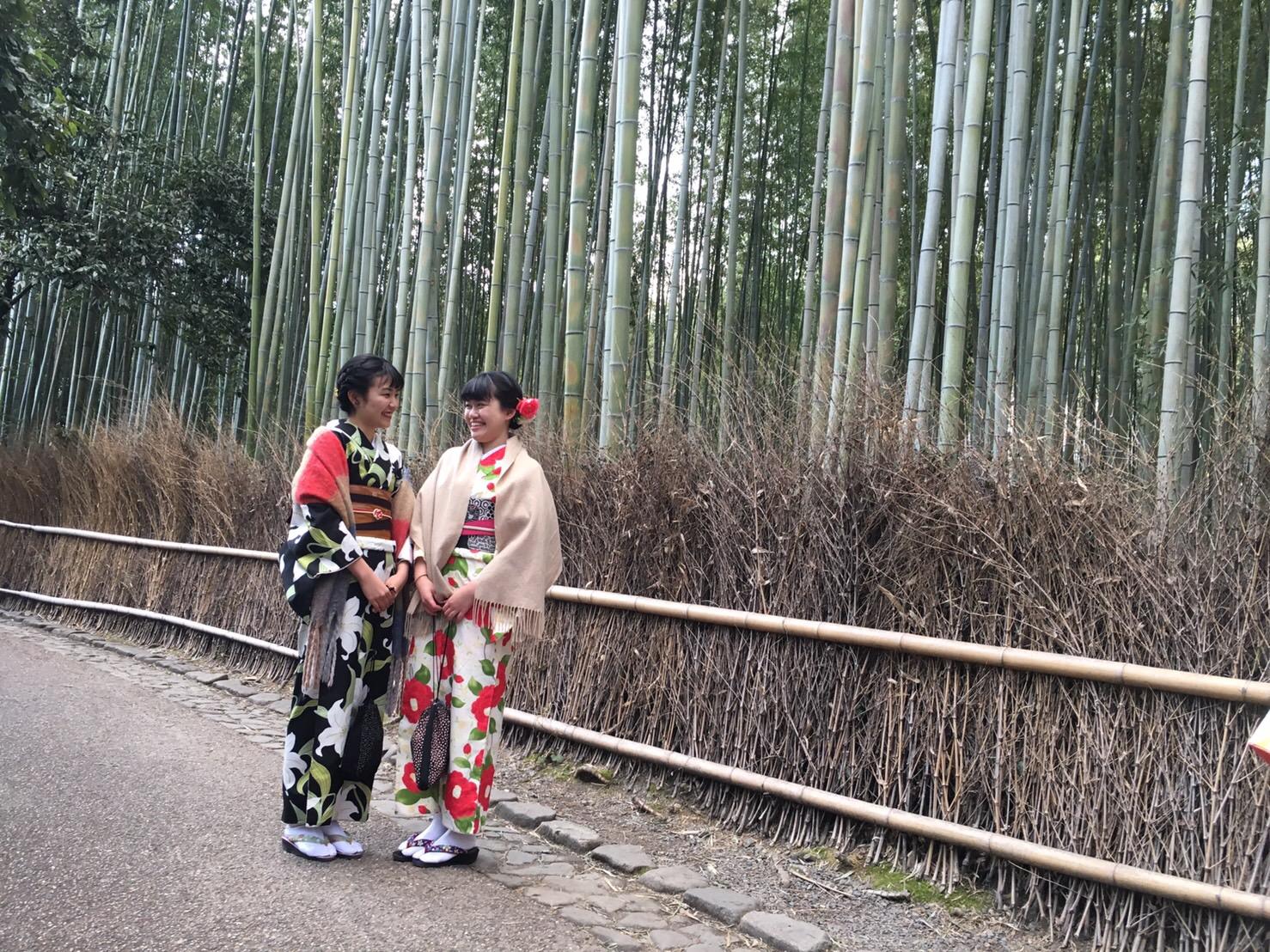 下鴨神社から嵐山へ2019年2月17日2
