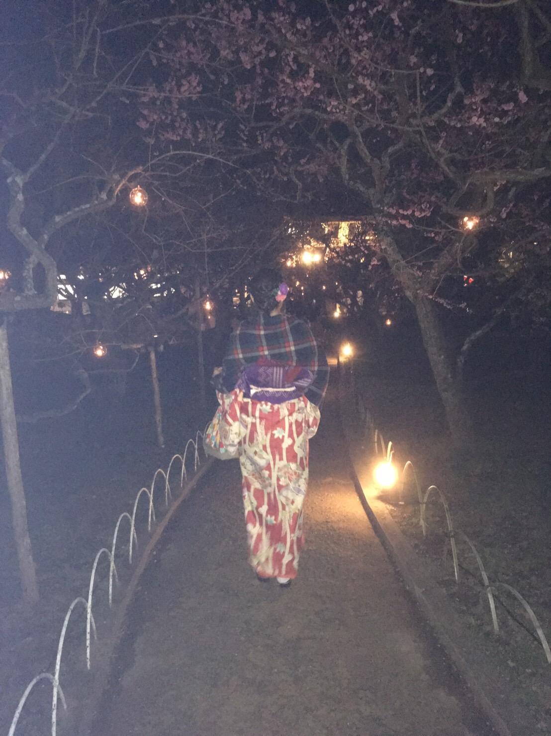 北野天満宮「夜の観梅 梅園ライトアップ」2019年2月22日4