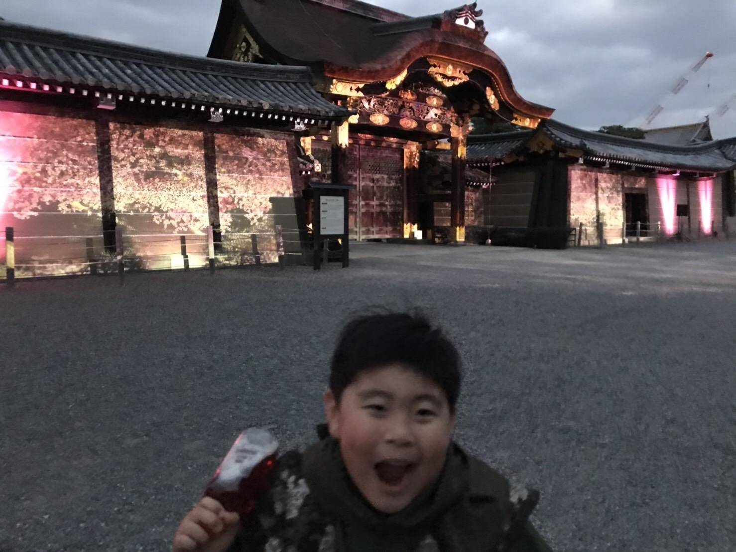 二条城桜まつり2019ライトアップ2019年3月22日11