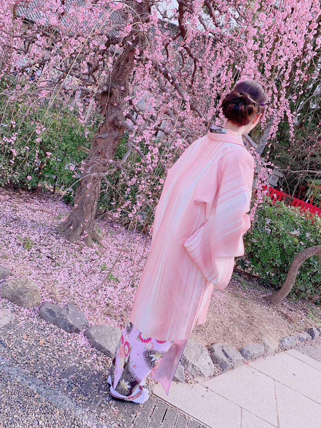卒業旅行に着物で伏見稲荷大社へ♪2019年3月13日6