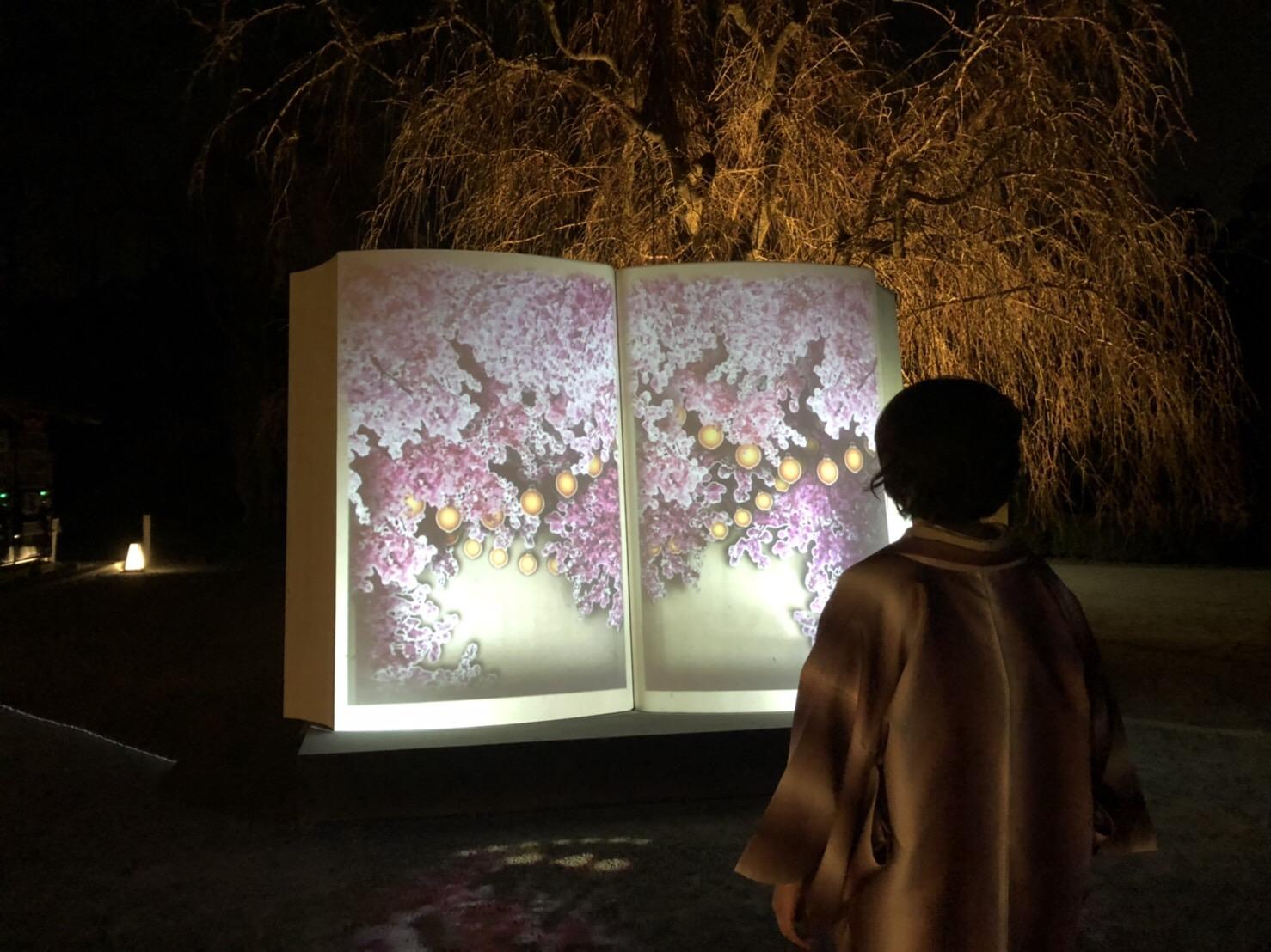 リピーター様❣平野神社でお花見2019年3月29日9