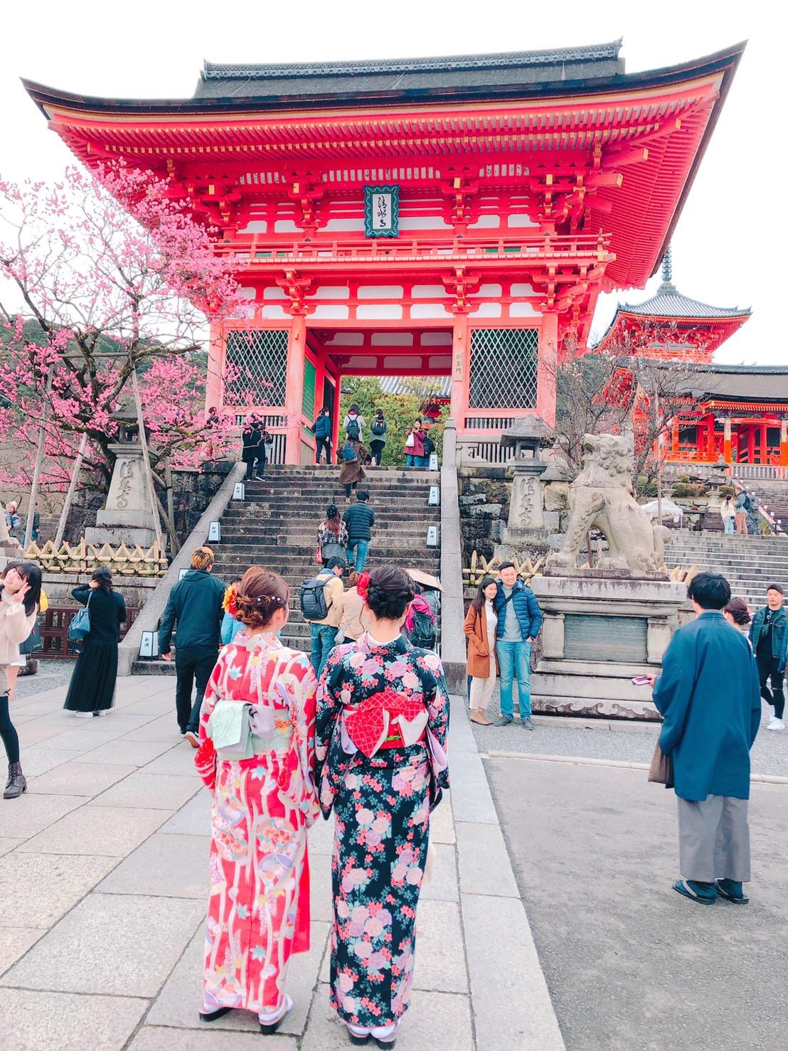 東山花灯路2019キレイで~す♡2019年3月11日3
